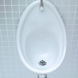 Lecico Atlas 500mm Urinal Bowl